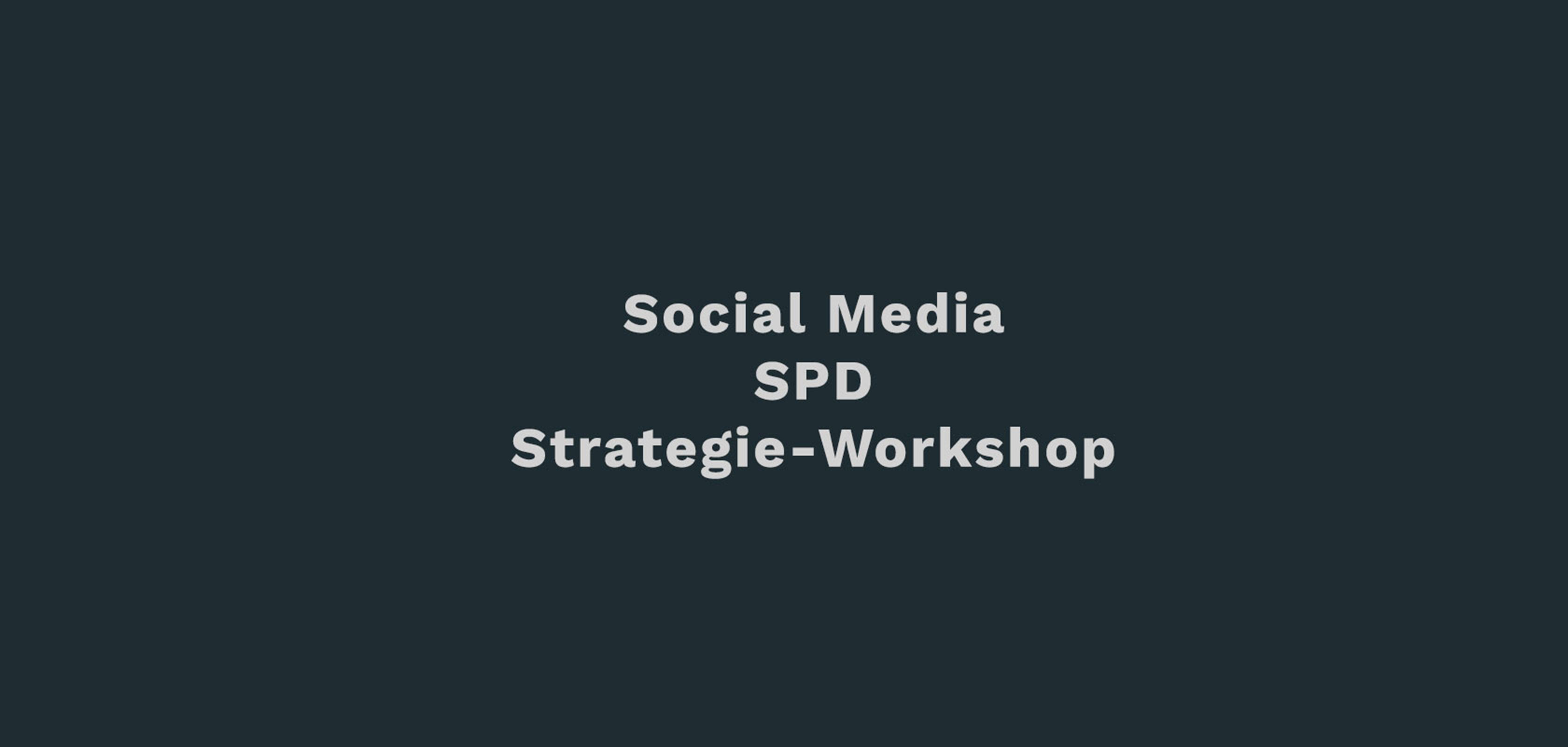 SPD-Strategie-Workshop-DZP-Social-Media