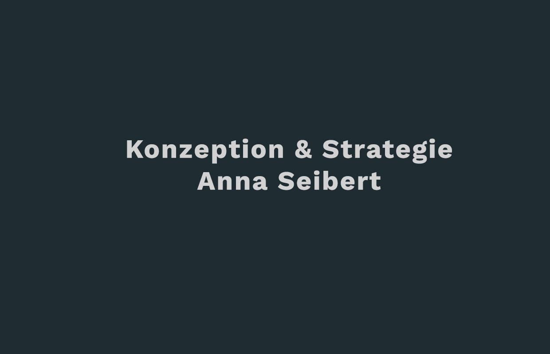 anna-seibert-DZP-Konzeption_Strategie