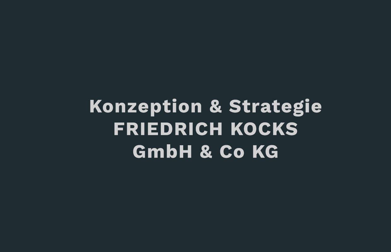 friedrich-kocks-DZP-Konzeption_Strategie
