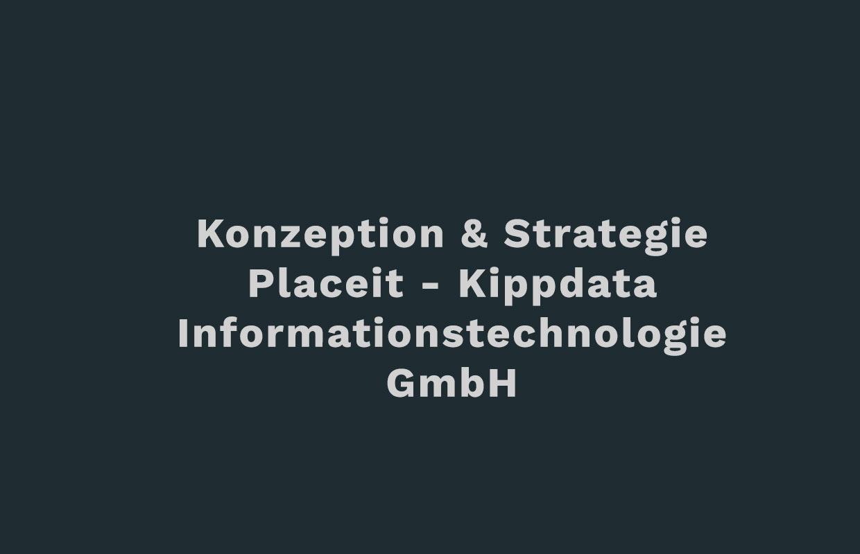 placeit-DZP-Konzeption_Strategie