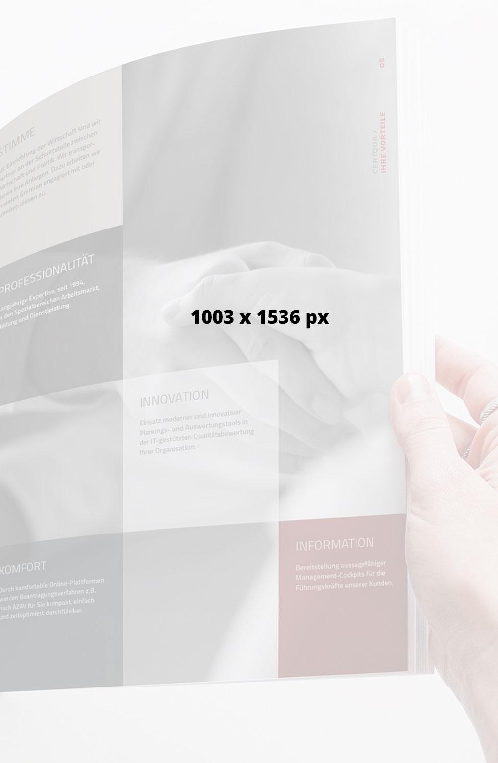 1003x1536-px